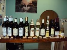 Fotogalerie - Řízená degustace vín